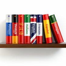 Языковая подготовка